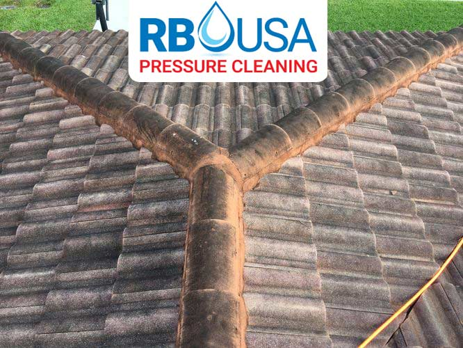 RBUSA-driveway-Pressure-Cleaning-before-2019-01